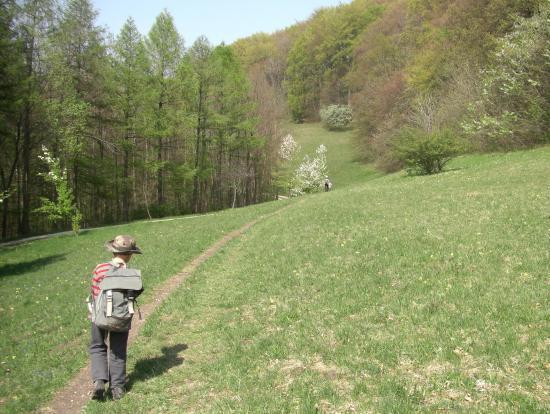 """Séjour des """"Petits Loups"""" en Allemagne"""