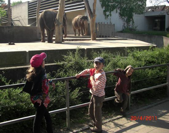 Zoo de Stuttgart
